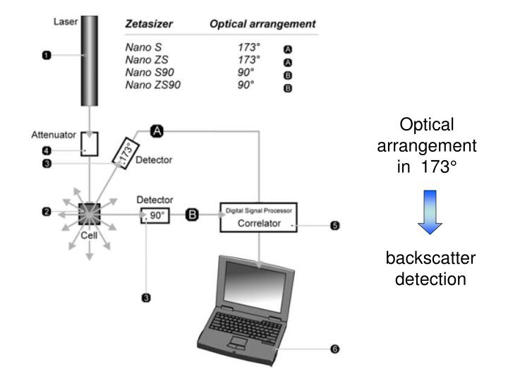 Optical arrangement in  173°