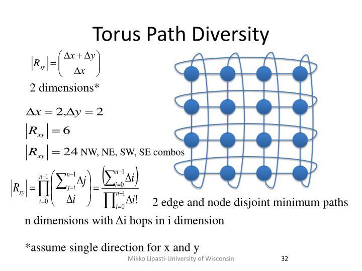 Torus Path Diversity
