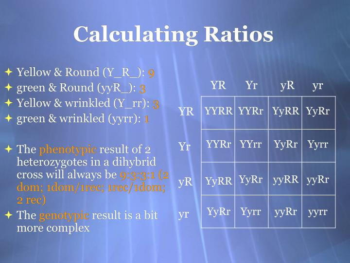 Calculating Ratios