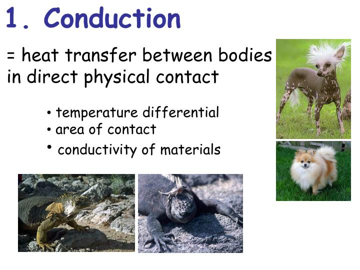 1. Conduction