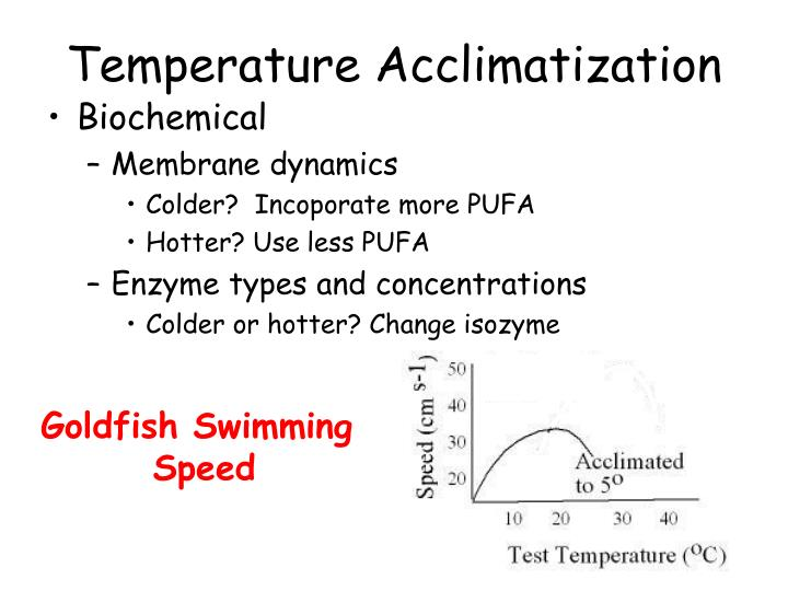 Temperature Acclimatization