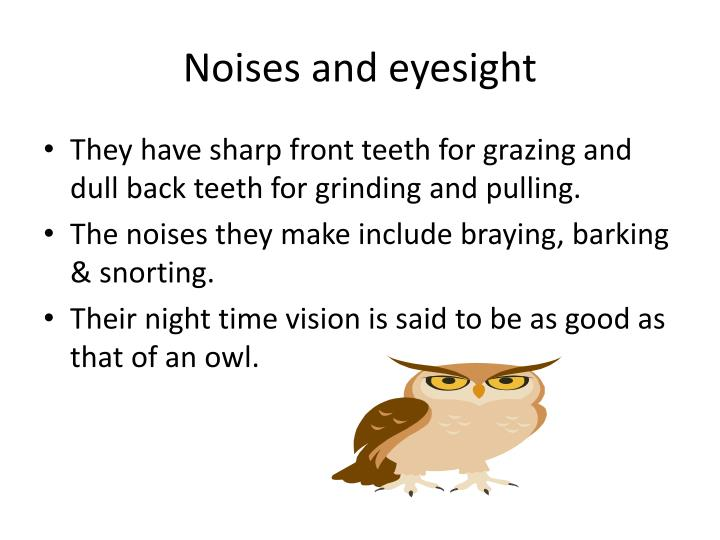 Noises and eyesight