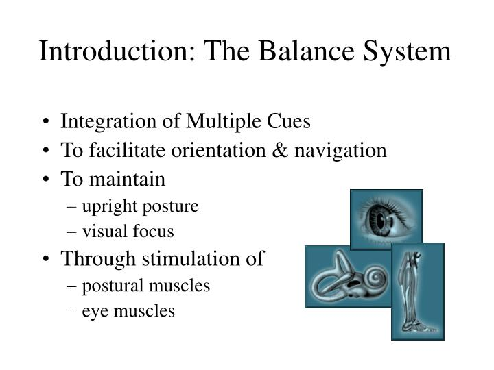 Introduction the balance system