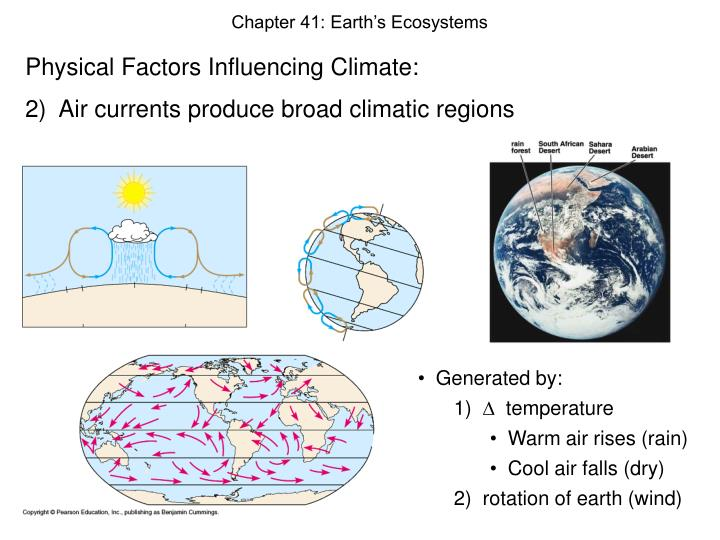 Chapter 41: Earth's Ecosystems