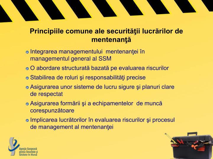 Principiile comune ale securităţii lucrărilor de mentenanţă
