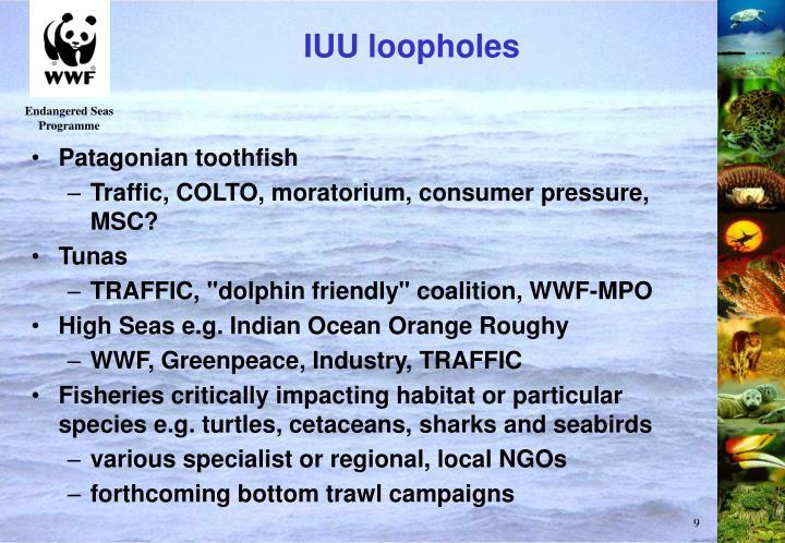 IUU loopholes