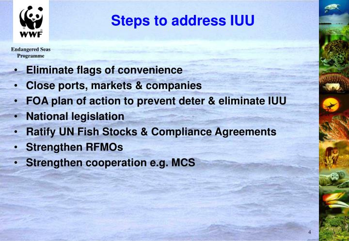 Steps to address IUU