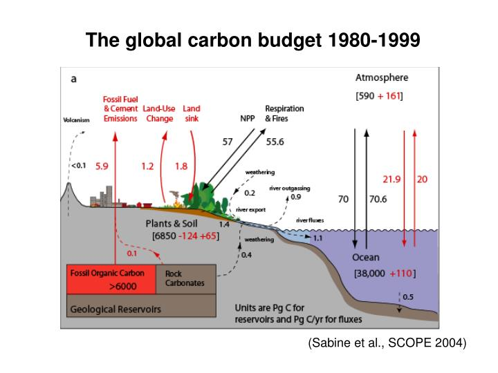 The global carbon budget 1980 1999