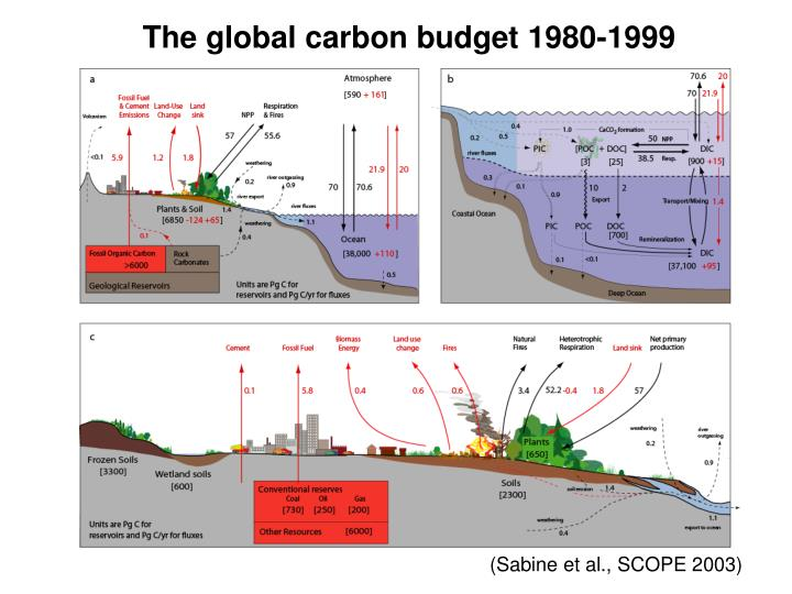 The global carbon budget 1980-1999