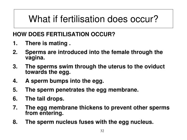 What if fertilisation does occur?