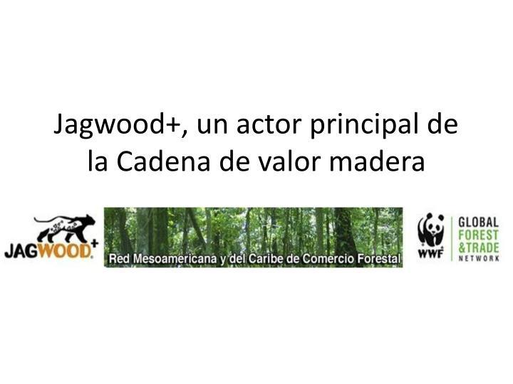 Jagwood+, un actor principal de la Cadena de valor madera
