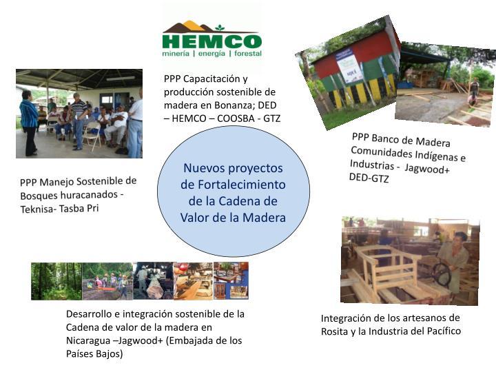 PPP Capacitación y producción sostenible de madera en Bonanza; DED – HEMCO – COOSBA - GTZ