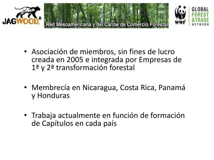 Asociación de miembros, sin fines de lucro creada en 2005 e integrada por Empresas de 1ª y 2ª transformación forestal