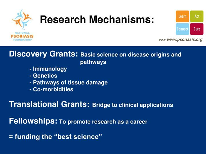 Research Mechanisms: