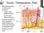 touch temperature pain