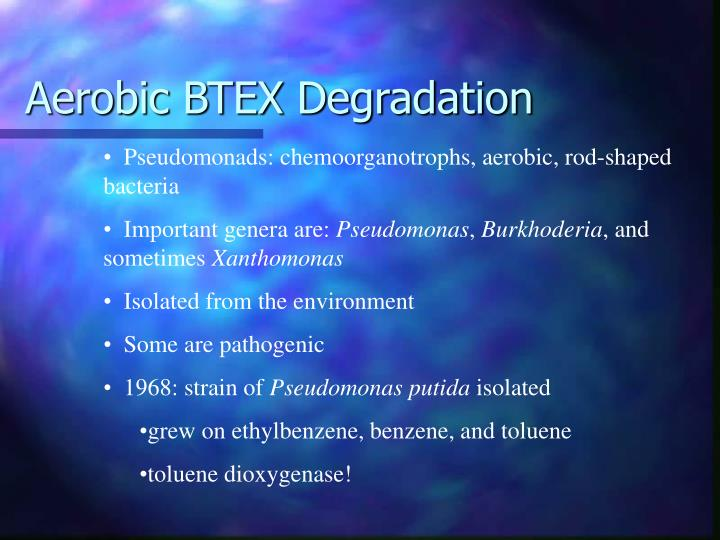 Aerobic BTEX Degradation