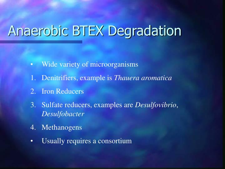 Anaerobic BTEX Degradation