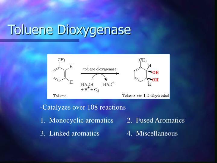 Toluene Dioxygenase