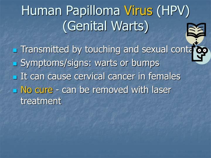 Human Papilloma