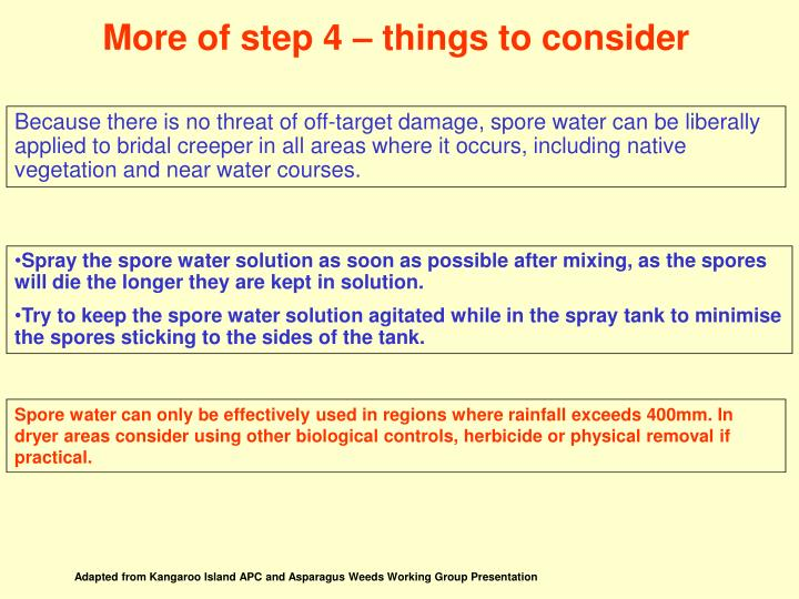 More of step 4 – things to consider