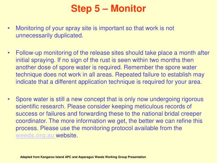 Step 5 – Monitor
