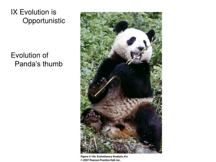 IX Evolution is