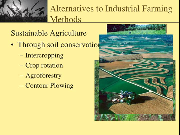alternative farming techniques essay As for as possible organic farmers rely on crop rotation, crop residues, animal  manures, and mechanical cultivation to maintain soil productivity,.