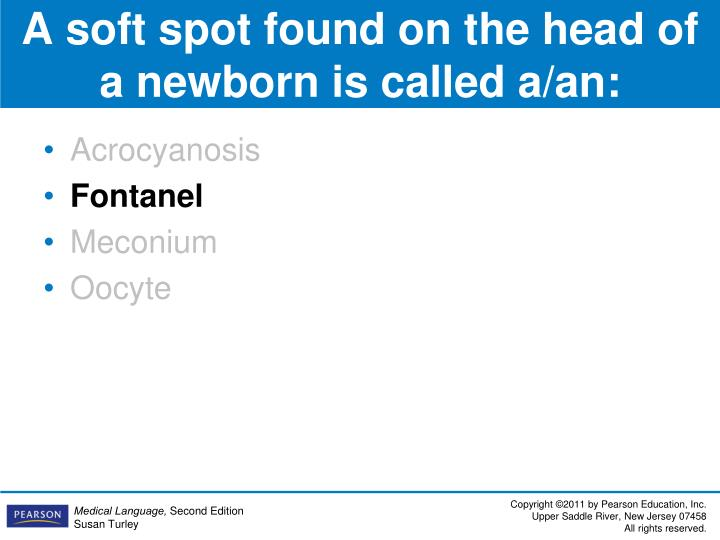 A soft spot found on the head of a newborn is called a/an: