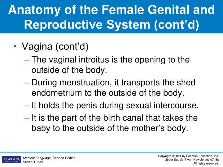 Vagina (cont'd)