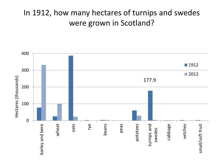 In 1912, how many hectares of turnips and