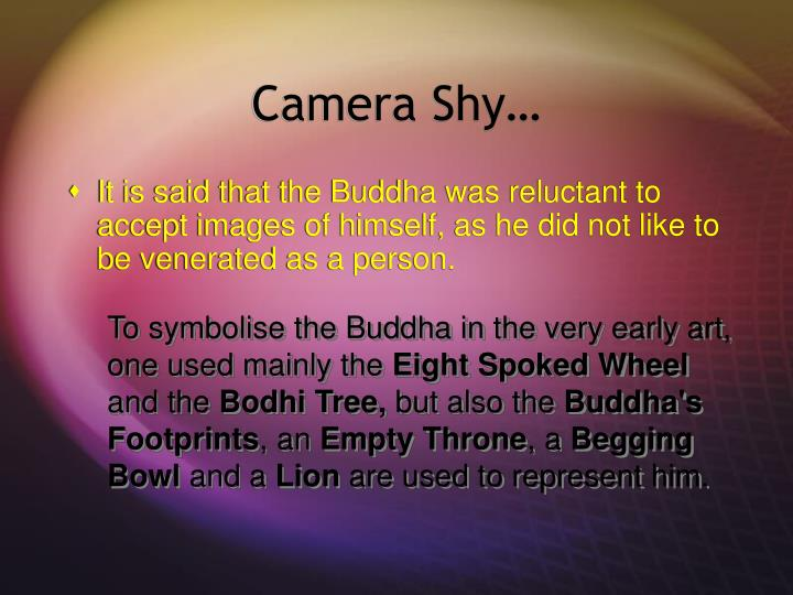 Camera Shy…