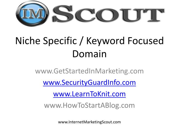 Niche Specific / Keyword Focused Domain