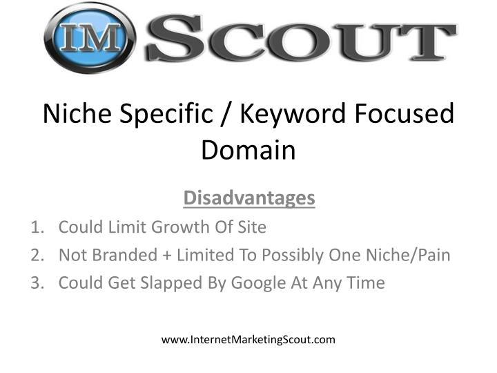 Niche Specific / Keyword Focused Domain