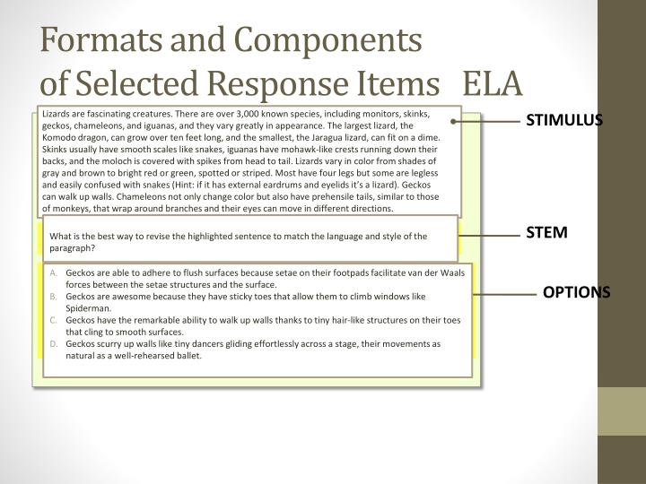Formats and Components