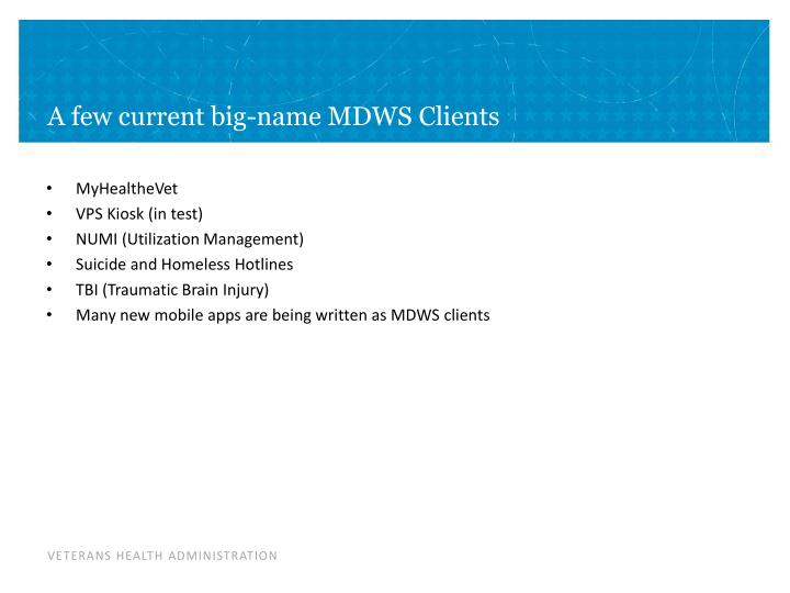 A few current big-name MDWS Clients