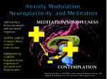 anxiety modulation neuroplasticity and meditation