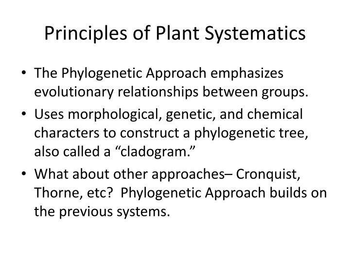 evolutionary relationships between two plants