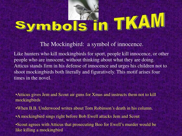 Symbols in TKAM