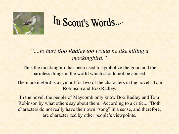 In Scout's Words....