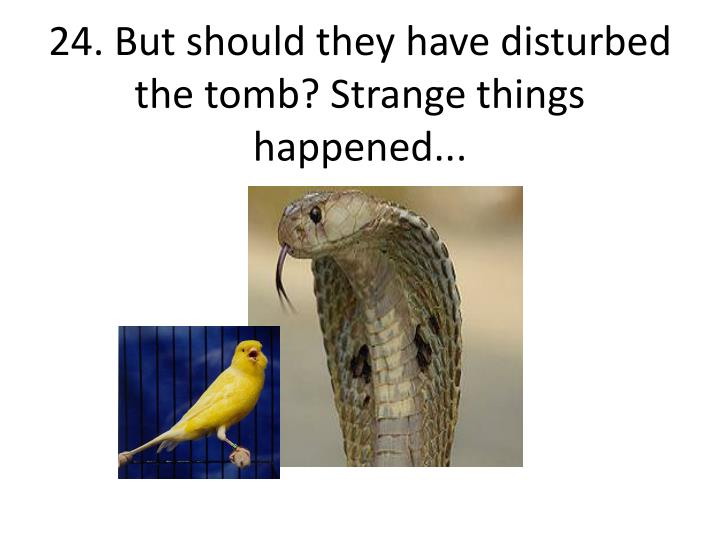 24. But should they have disturbed the tomb? Strange things happened...