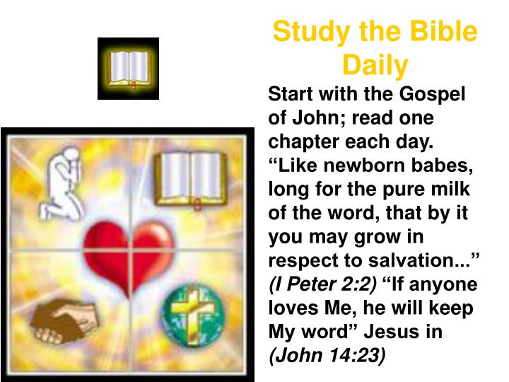 Study the Bible Daily