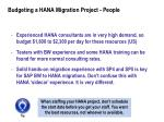 budgeting a hana migration project people1