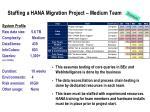 staffing a hana migration project medium team