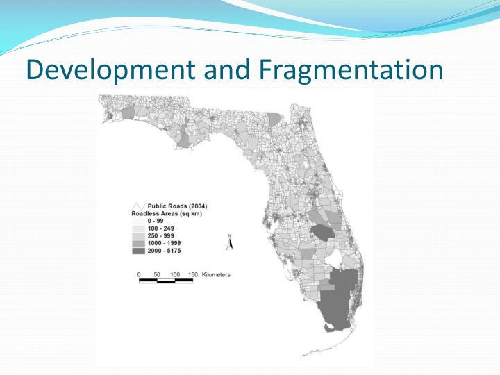 Development and Fragmentation