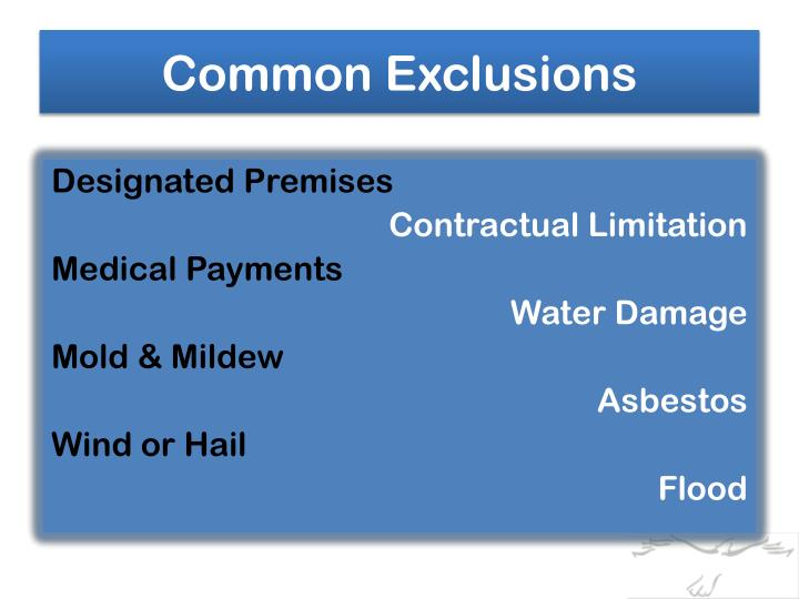 Common Exclusions