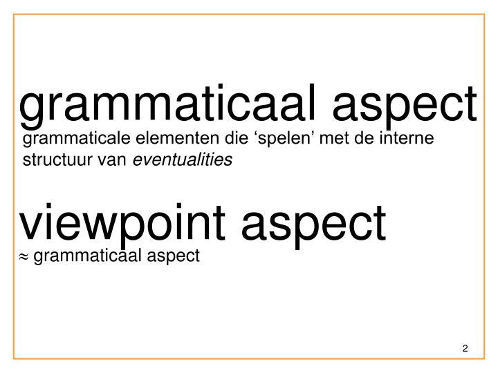 grammaticaal aspect