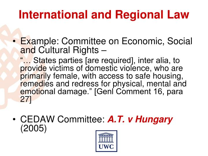 Example: Committee on Economic, Social and Cultural Rights –