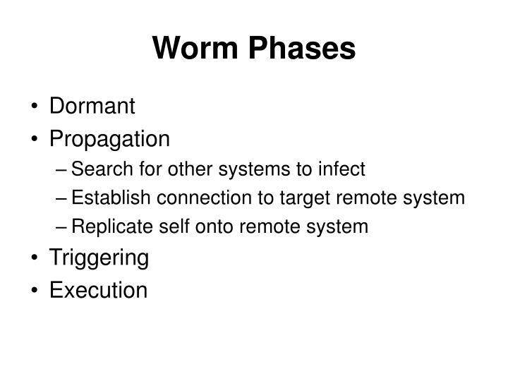 Worm Phases