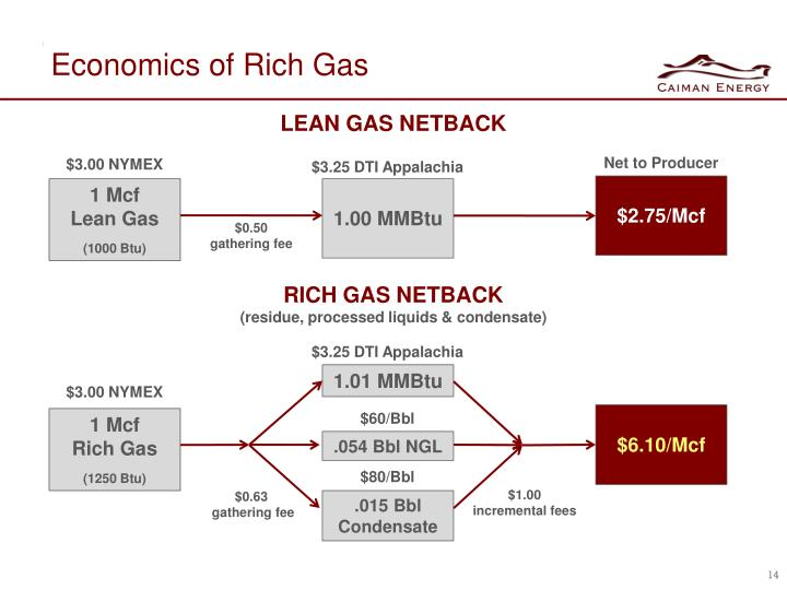 Economics of Rich Gas