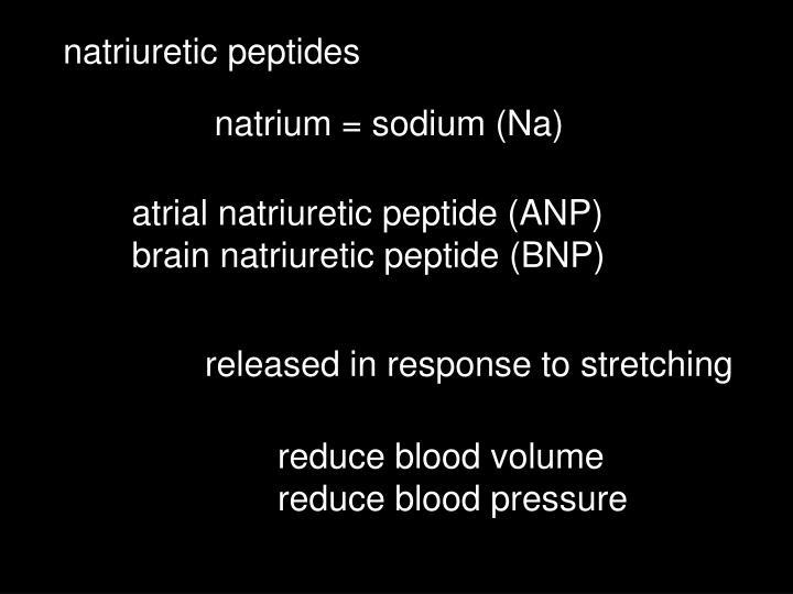natriuretic peptides